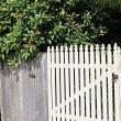 Braeside front gate